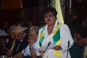 Social Cohesion Minister Amna Ally