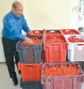 CGL CEO Sharma Lalla shows crates of pepper produced by the company