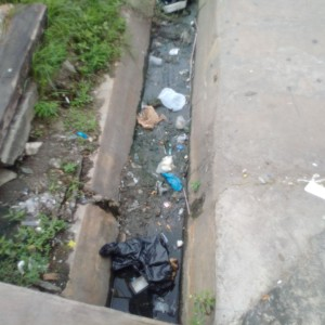 Garbage and silt reclaiming one of the drains on Regent Street.