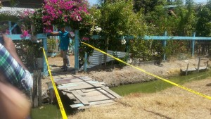 The yard at 351 5th Street South Belvedere, Corentyne, Berbice where 53-year old Bhumattie Delall was chopped to death. (Photo from Royston Drakes Production's Facebook)